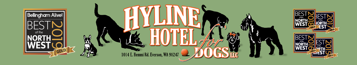 Hyline Hotel for Dogs Logo